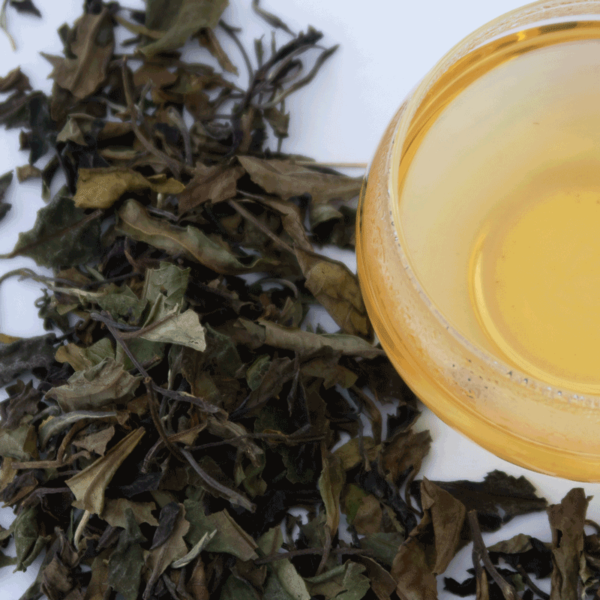 White-Tea-New