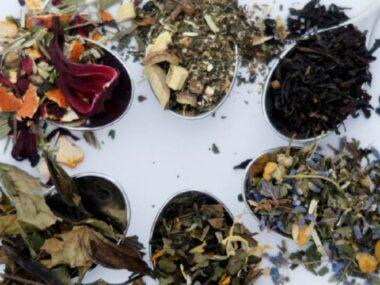 loose leaf tea samples